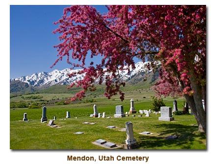 cemetery_spring