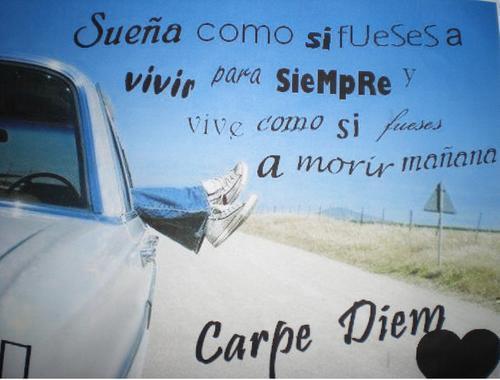 Carpe diem___