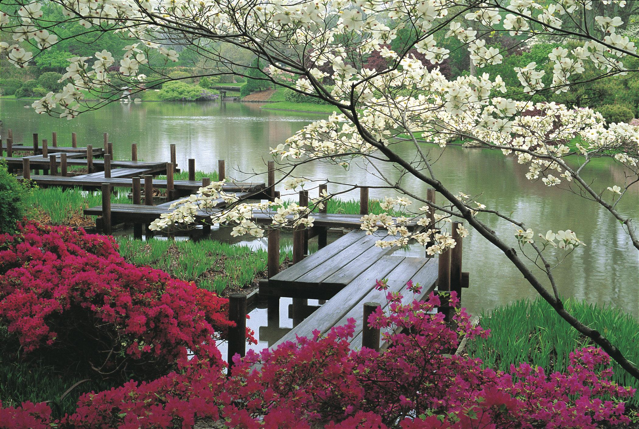 Heidegger y el jard n japon s el zool gico de yahv Jardin japones informacion